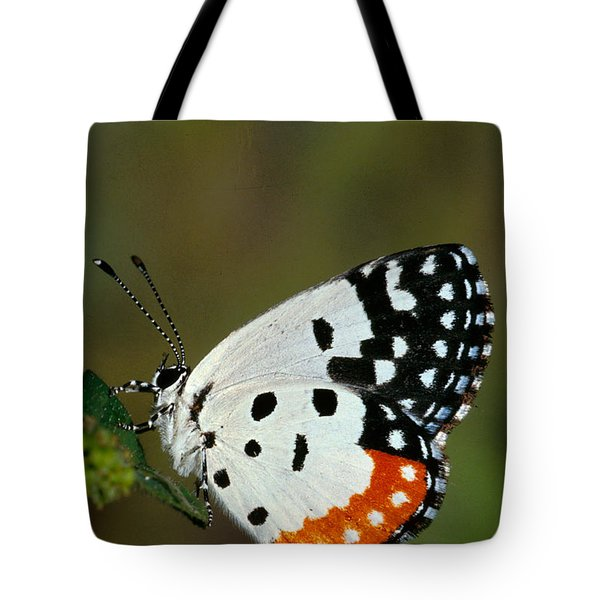 Red Pierrot Butterfly Tote Bag
