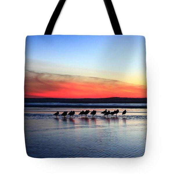 Shorebird Sunset Tote Bag