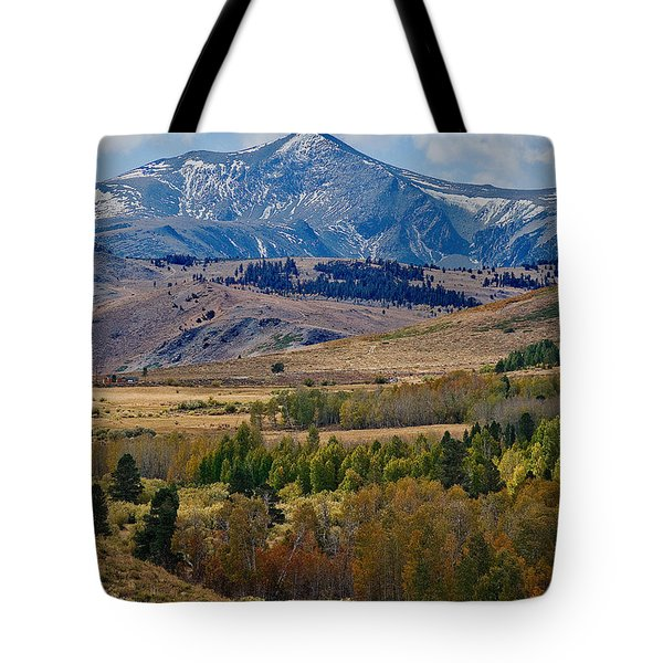 Tote Bag featuring the photograph  Sierras Mountains by Mae Wertz