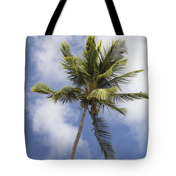 Tote Bag featuring the photograph  Sky And Palm Tree With Coconuts by Bryan Mullennix