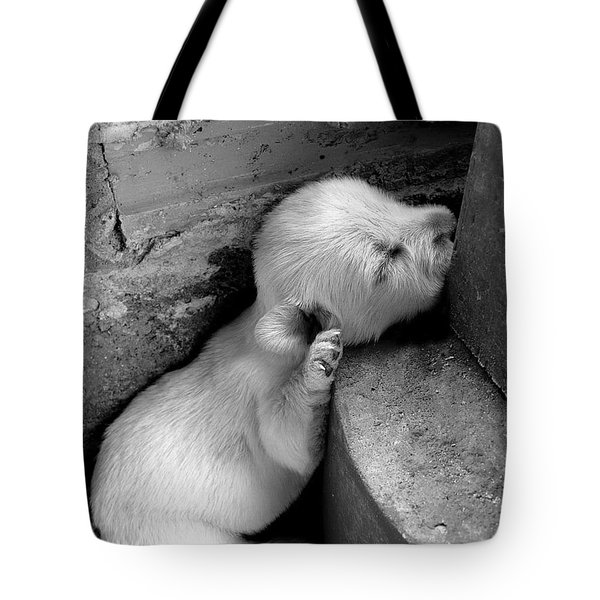 Sleep Well Tote Bag
