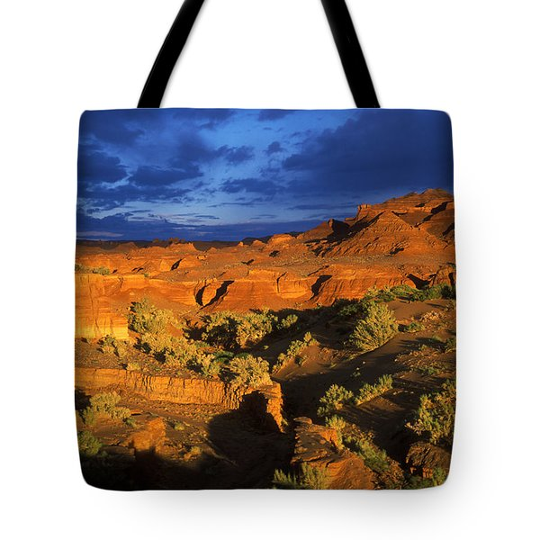The Gobi Tote Bag by Anonymous