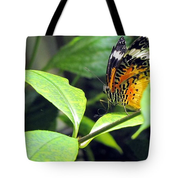 Tiger Wings Tote Bag by Jennifer Wheatley Wolf