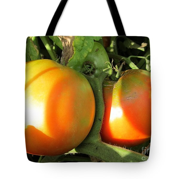 Tote Bag featuring the photograph  Vine Ripe Tomatoes by Tina M Wenger