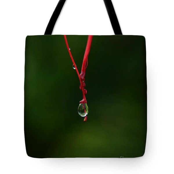 Waterdrop Tote Bag by Michelle Meenawong