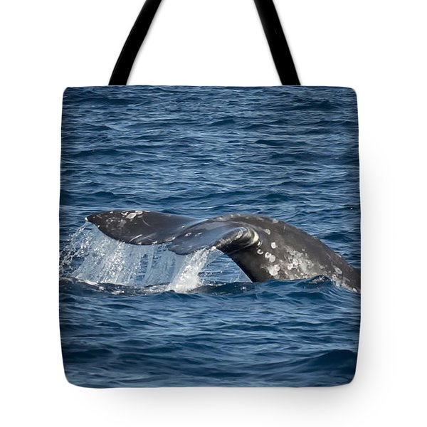 Whale Fluke In Dana Point Tote Bag by Loriannah Hespe