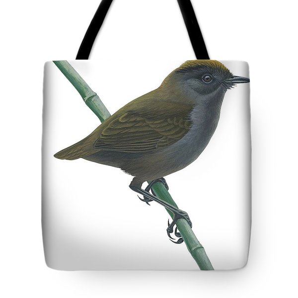 Wrenthrush Tote Bag by Anonymous