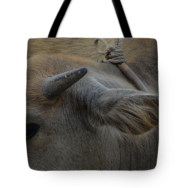 Young Buffalo Tote Bag by Michelle Meenawong