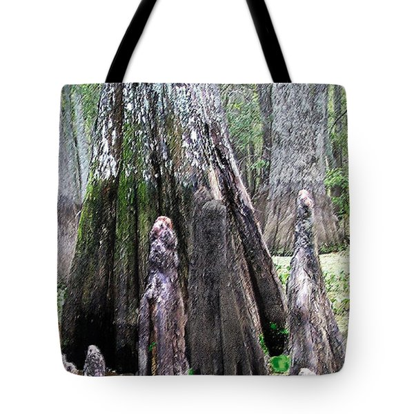 02102015 Honey Island Swamp Tote Bag