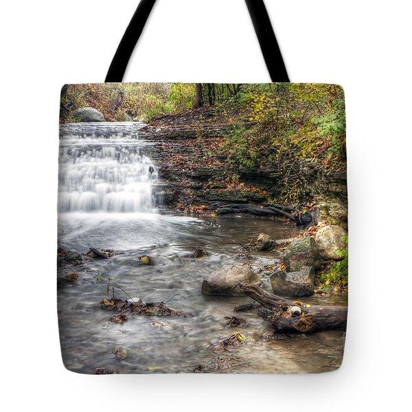 0278 South Elgin Waterfall Tote Bag