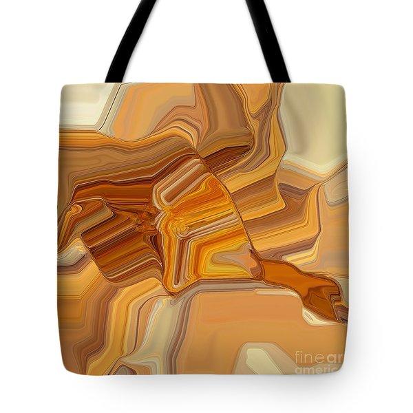 029-13 Tote Bag
