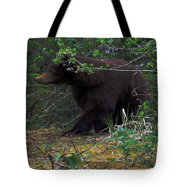 03162015 Black Bear Alaska Tote Bag