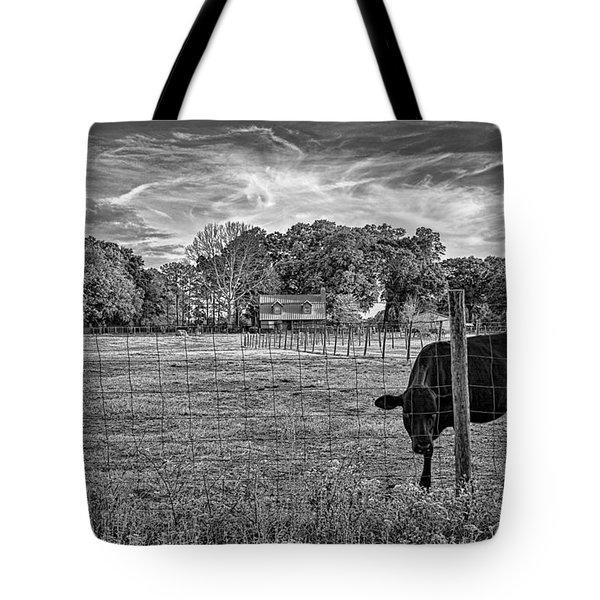 0570-223-bandw Tote Bag