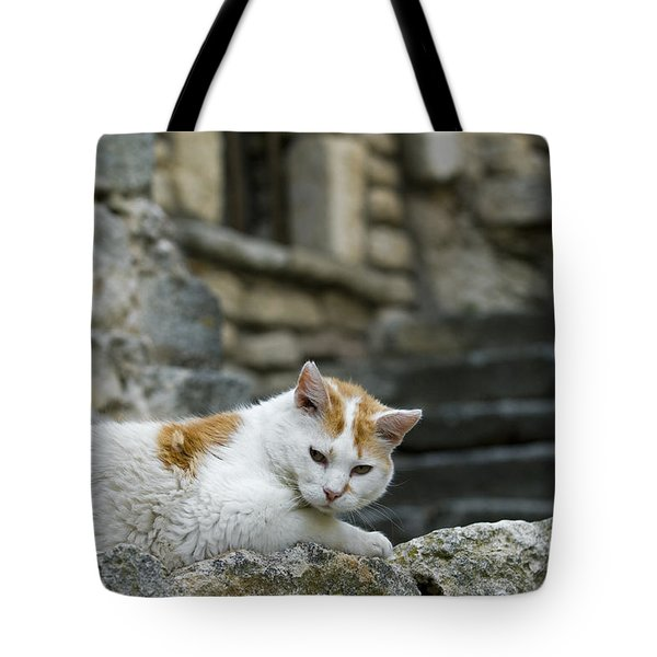 080720p005 Tote Bag by Arterra Picture Library