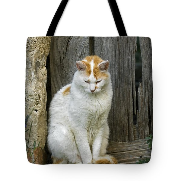 080801p076 Tote Bag by Arterra Picture Library