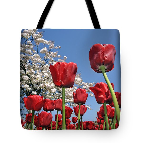 Tote Bag featuring the photograph 090416p031 by Arterra Picture Library