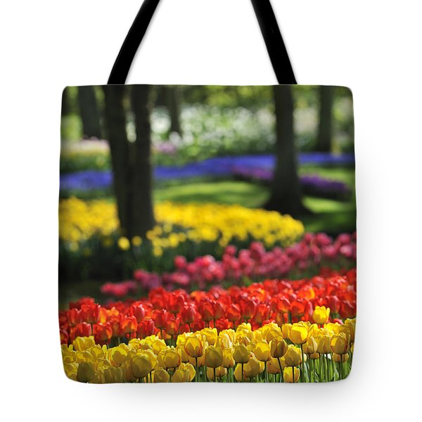 Tote Bag featuring the photograph 090811p124 by Arterra Picture Library