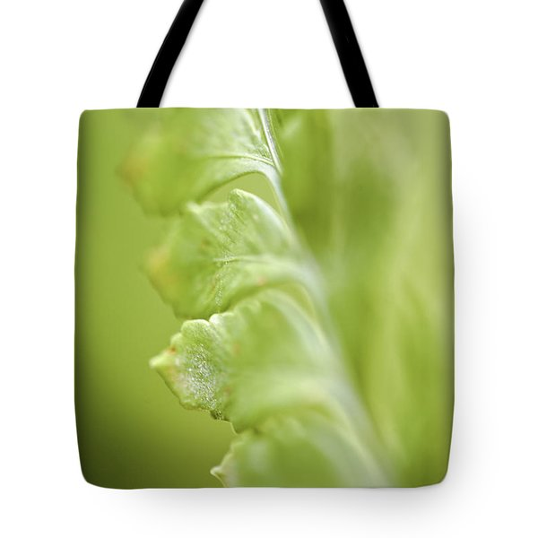 Tote Bag featuring the photograph  Fern Fronds by Richard J Thompson