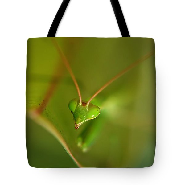 Praying Manta Tote Bag