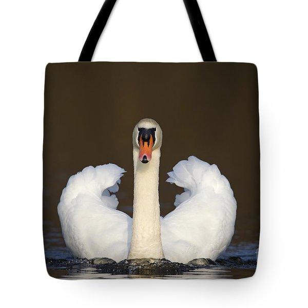 121012p165 Tote Bag