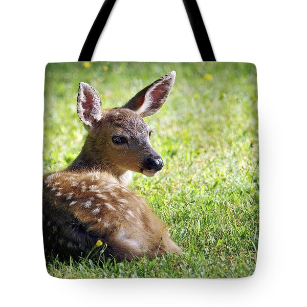 A Fawn On The Lawn Tote Bag