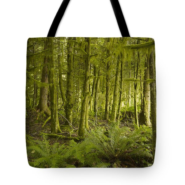 A Lush Forest Tofino British Columbia Tote Bag by Ian Grant