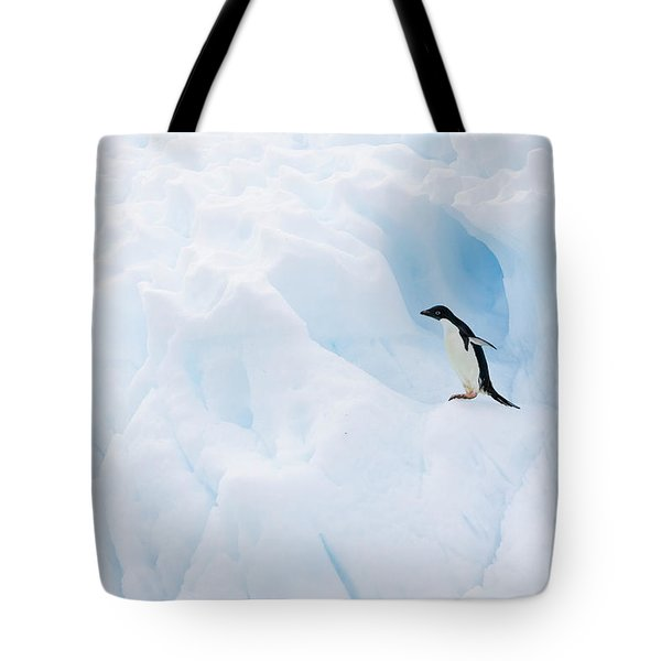 Adelie Penguin On Iceberg Tote Bag by Suzi Eszterhas