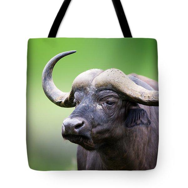 African Buffalo Portrait Tote Bag