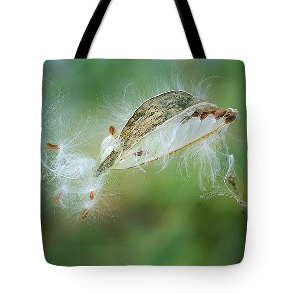 Against The Wind 2 Tote Bag