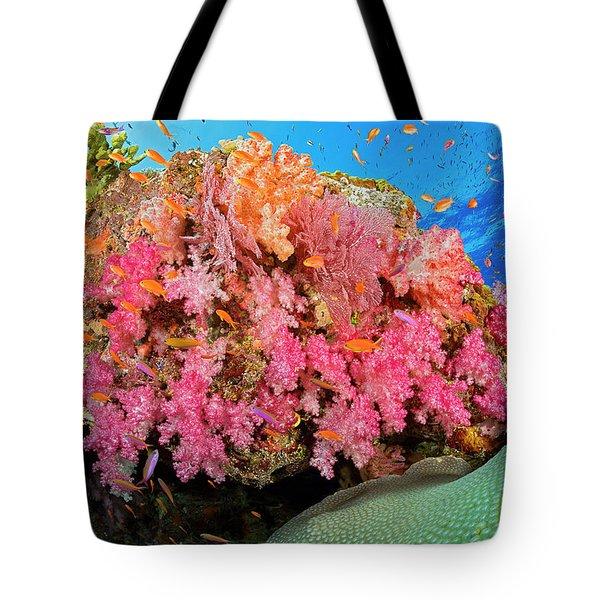 Alconarian And Gorgonian Coral Tote Bag