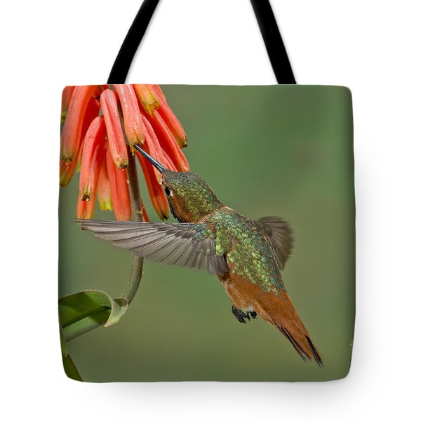 Allens Hummingbird Feeding Tote Bag