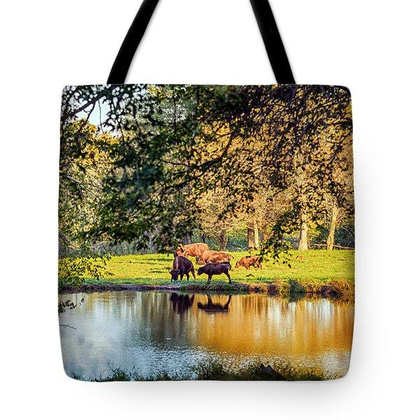 American Bison Tote Bag by Sennie Pierson