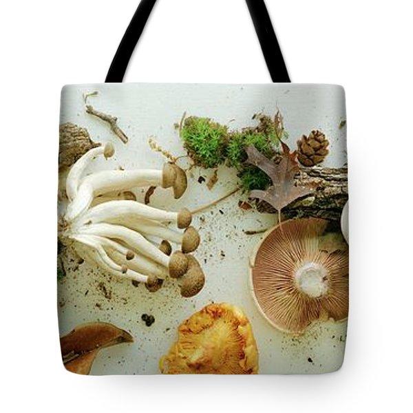 An Assortment Of Mushrooms Tote Bag
