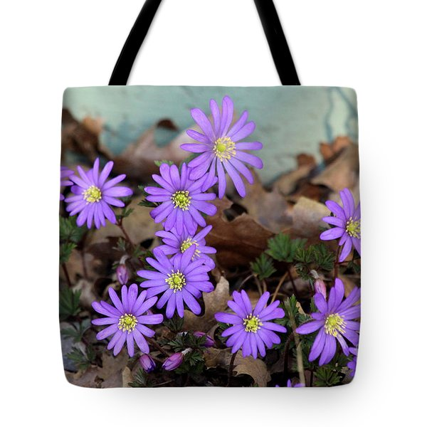 Tote Bag featuring the photograph Anemones  by Irina Hays