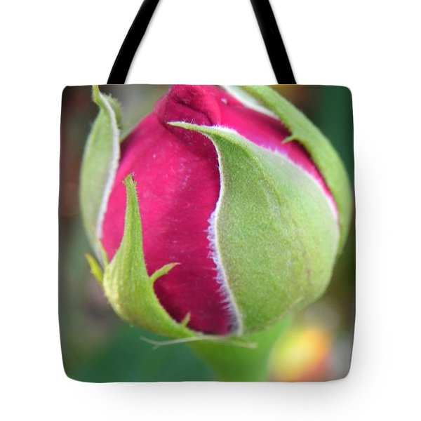 Tote Bag featuring the photograph Anticipation by Deb Halloran