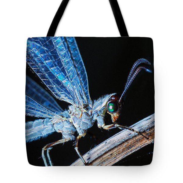 Antlion Tote Bag