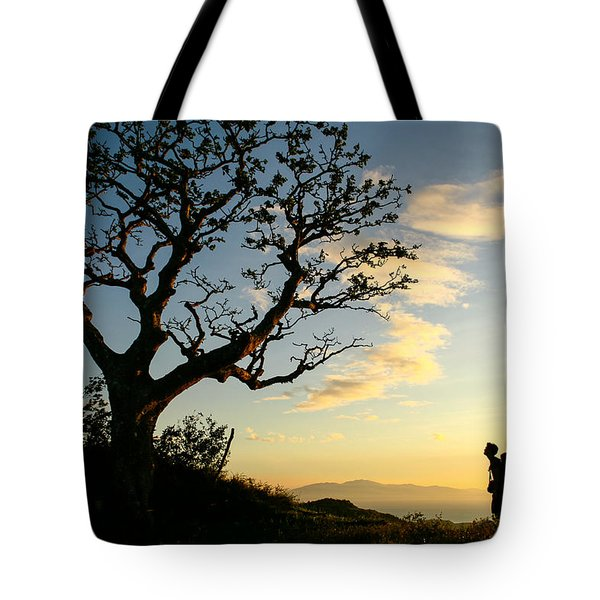 Approaching Summit Tote Bag