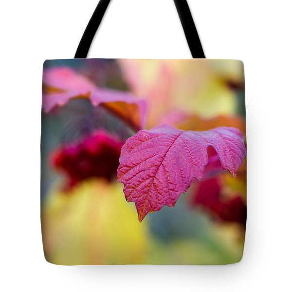 Arrowwood Leaf - Featured 3 Tote Bag by Alexander Senin