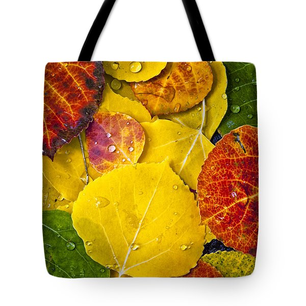 Aspen Rainbow Tote Bag