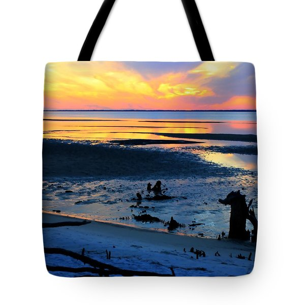 At A Days End Tote Bag by Debra Forand