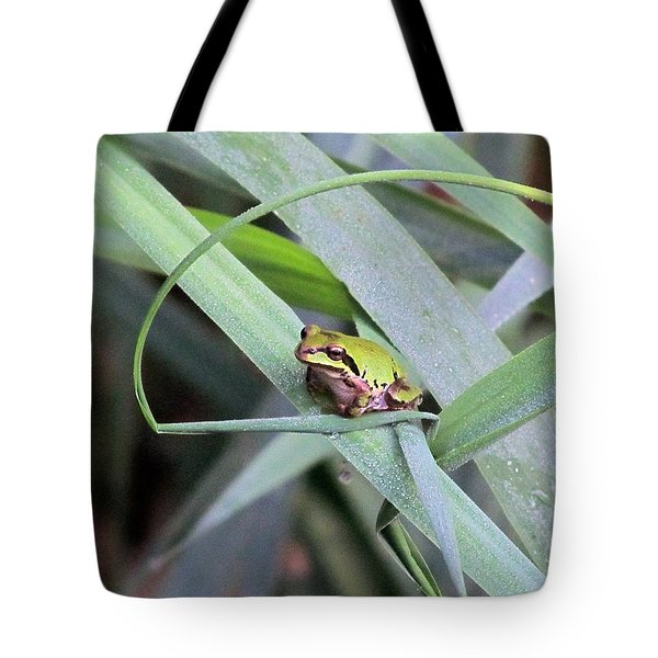 Tote Bag featuring the photograph At The Crossroads by I'ina Van Lawick