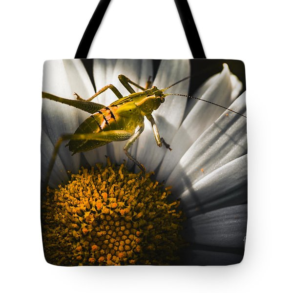 Australian Grasshopper On Flowers. Spring Concept Tote Bag by Jorgo Photography - Wall Art Gallery