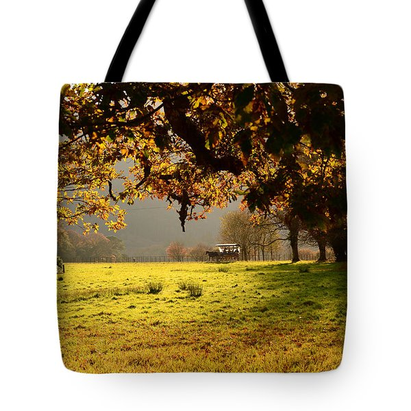 Autum Tote Bag by Barbara Walsh