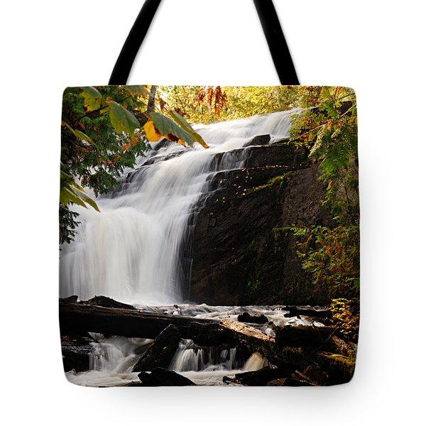 Autumn At Cattyman Falls Tote Bag