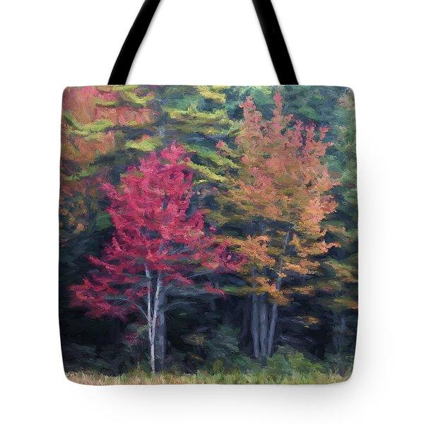 Autumn Color Painterly Effect Tote Bag