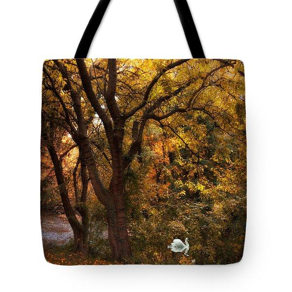 Autumn Glow Tote Bag