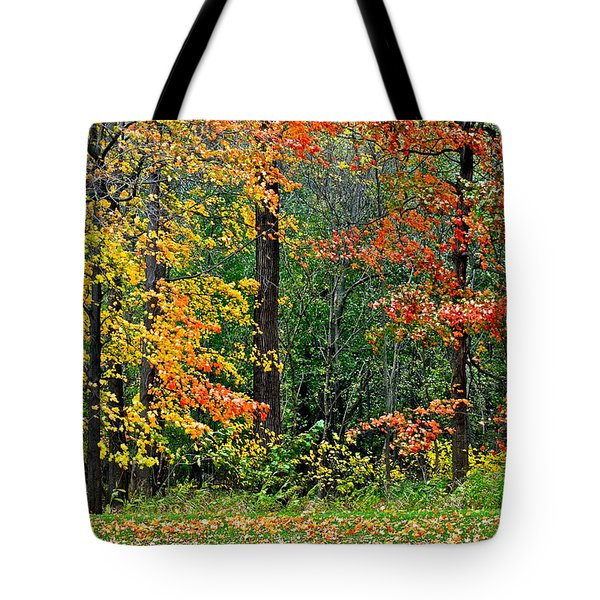 Autumn Landscape Tote Bag by Frozen in Time Fine Art Photography