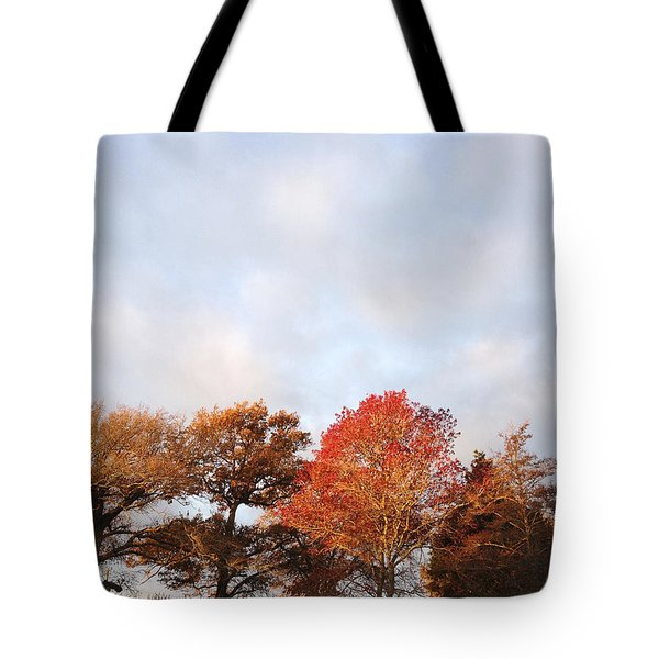 Autumn Tote Bag by Les Cunliffe