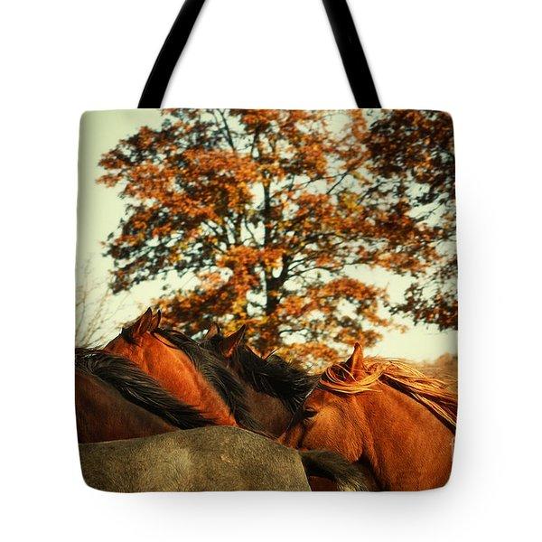 Autumn Wild Horses Tote Bag