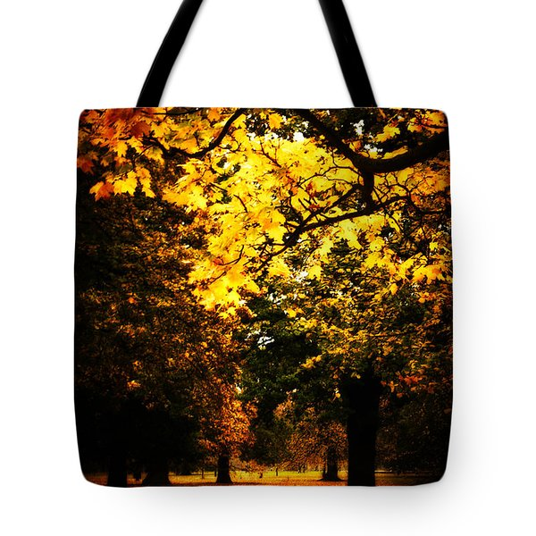 Autumnal Walks Tote Bag
